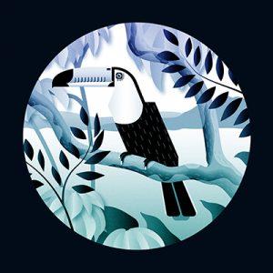 vector, graphics, illustration, art, carolyn ross, bird, toucan, jungle, blue